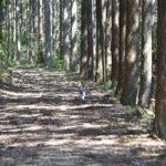 秋冬コース写真